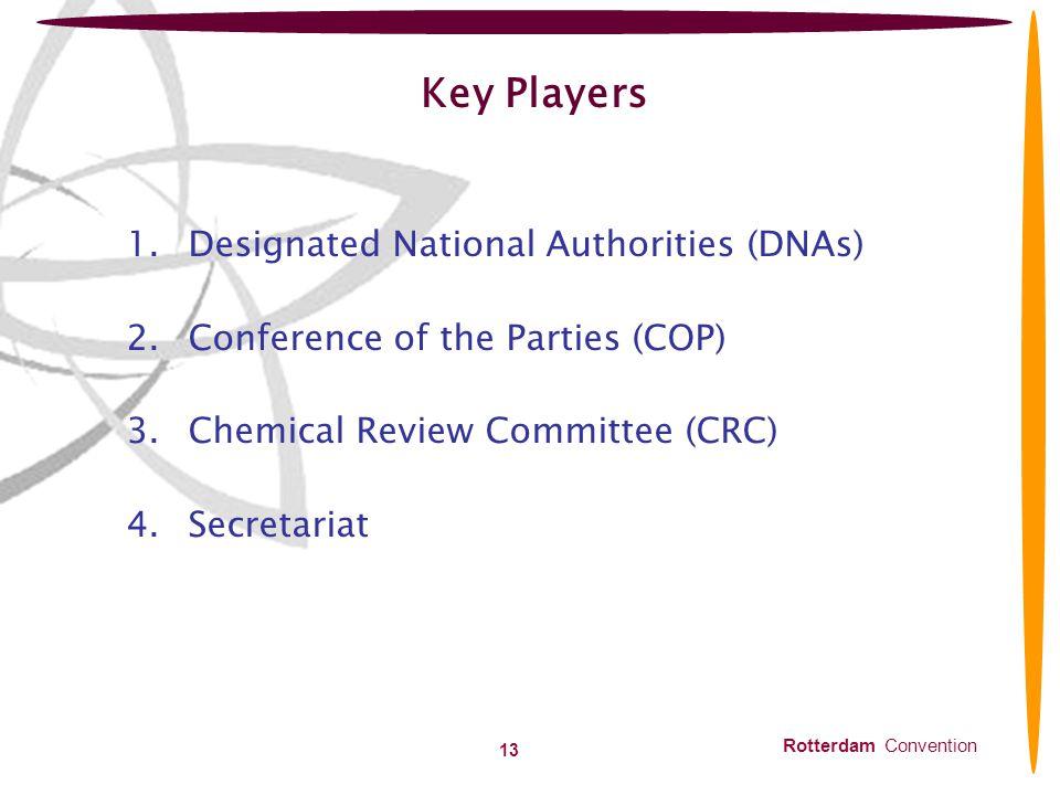Key Players Designated National Authorities (DNAs)