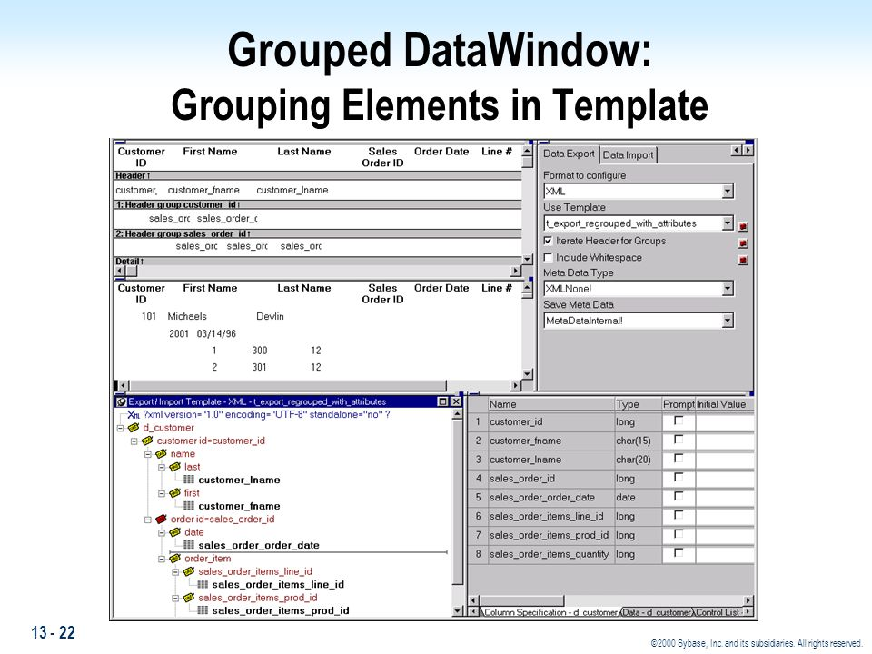 Grouped DataWindow: Grouping Elements in Template