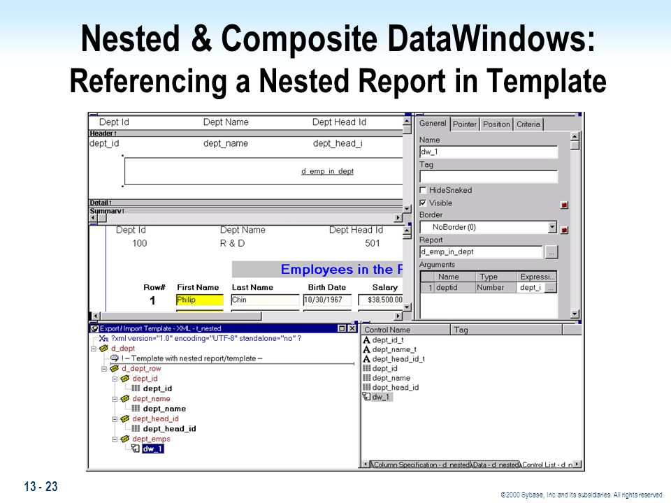 Nested & Composite DataWindows: Referencing a Nested Report in Template