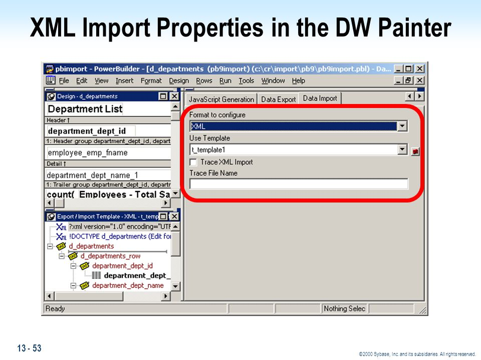 XML Import Properties in the DW Painter