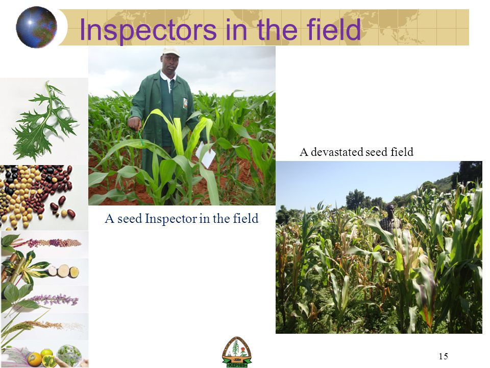 Inspectors in the field
