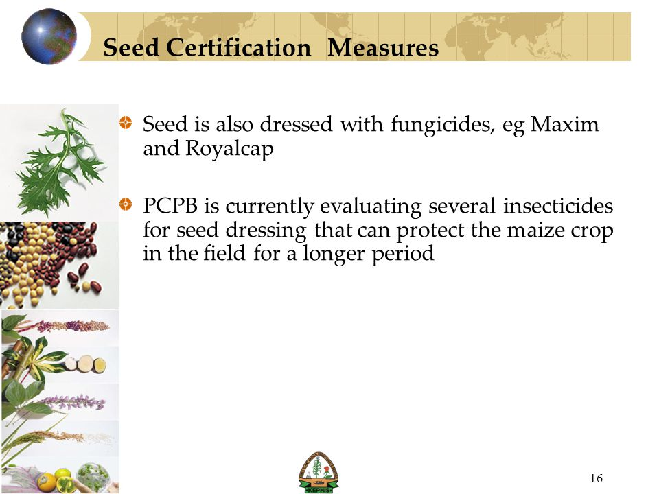 Seed Certification Measures