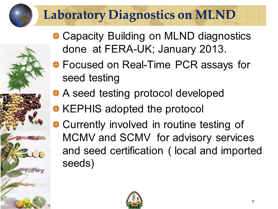 Laboratory Diagnostics on MLND