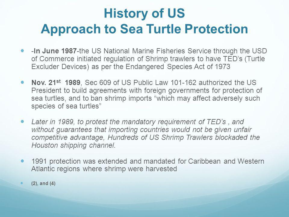 History of US Approach to Sea Turtle Protection
