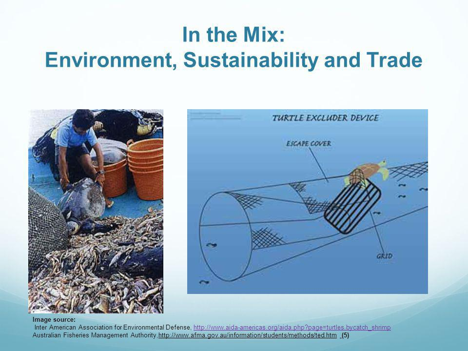 In the Mix: Environment, Sustainability and Trade