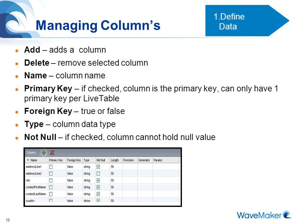 Managing Column's Define Data Add – adds a column
