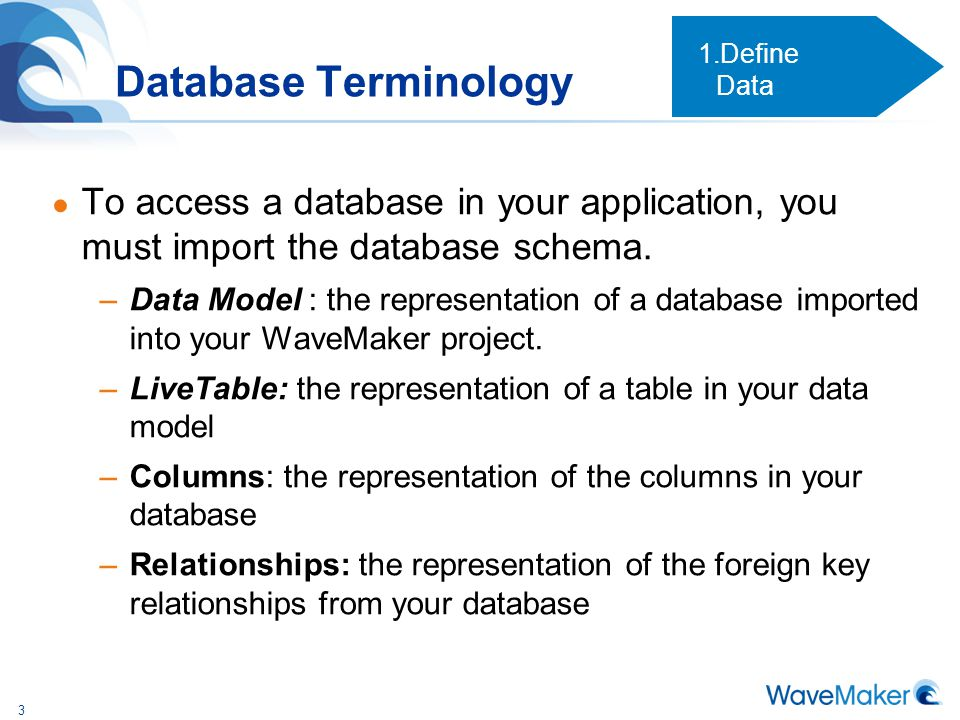 Define Data Database Terminology. To access a database in your application, you must import the database schema.