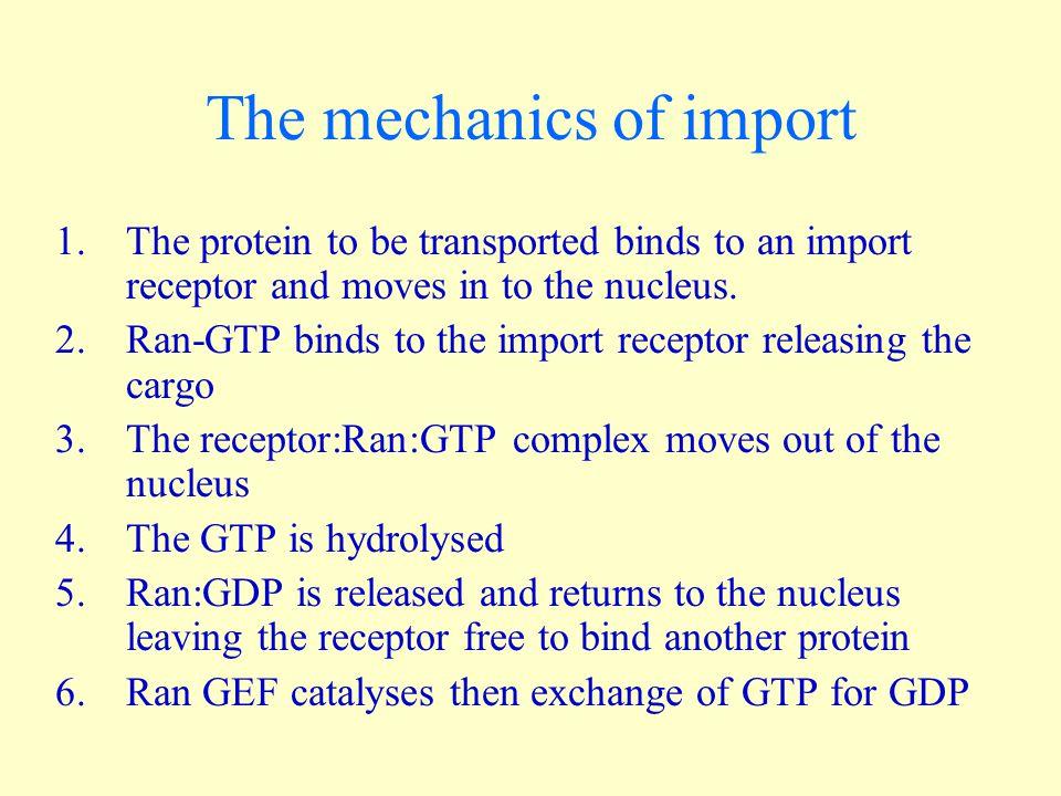 The mechanics of import