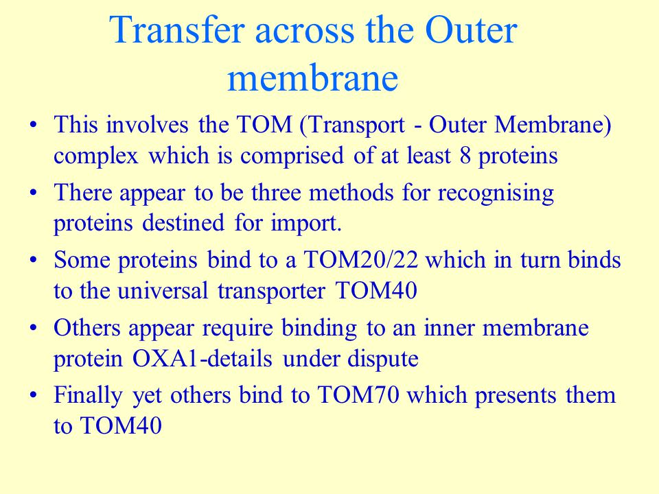 Transfer across the Outer membrane