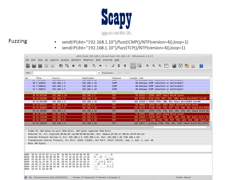 Scapy Fuzzing.