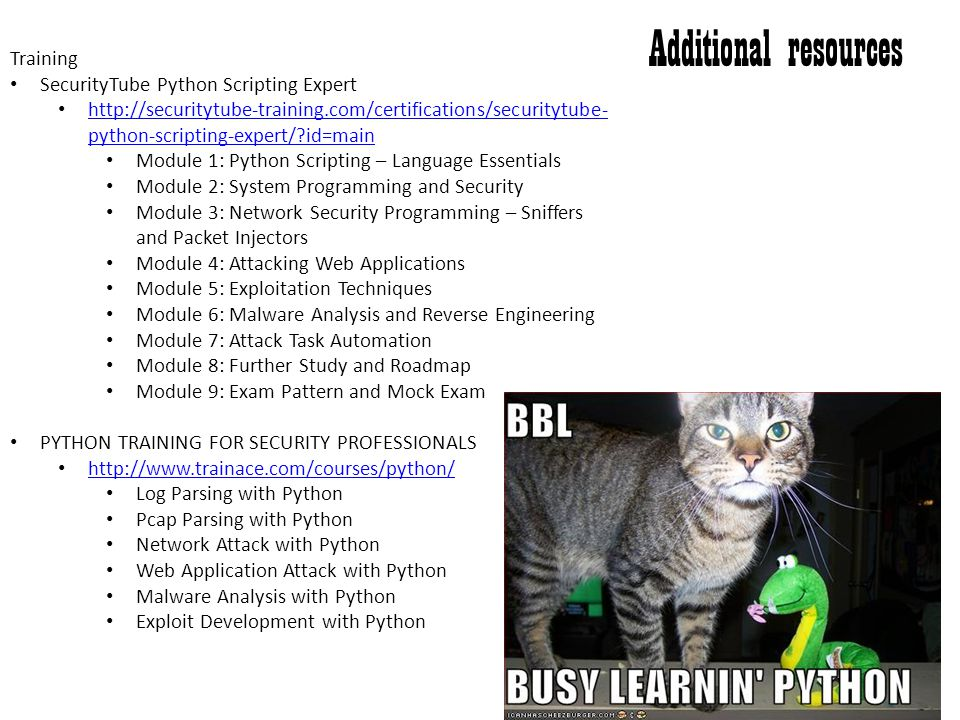 Additional resources Training SecurityTube Python Scripting Expert