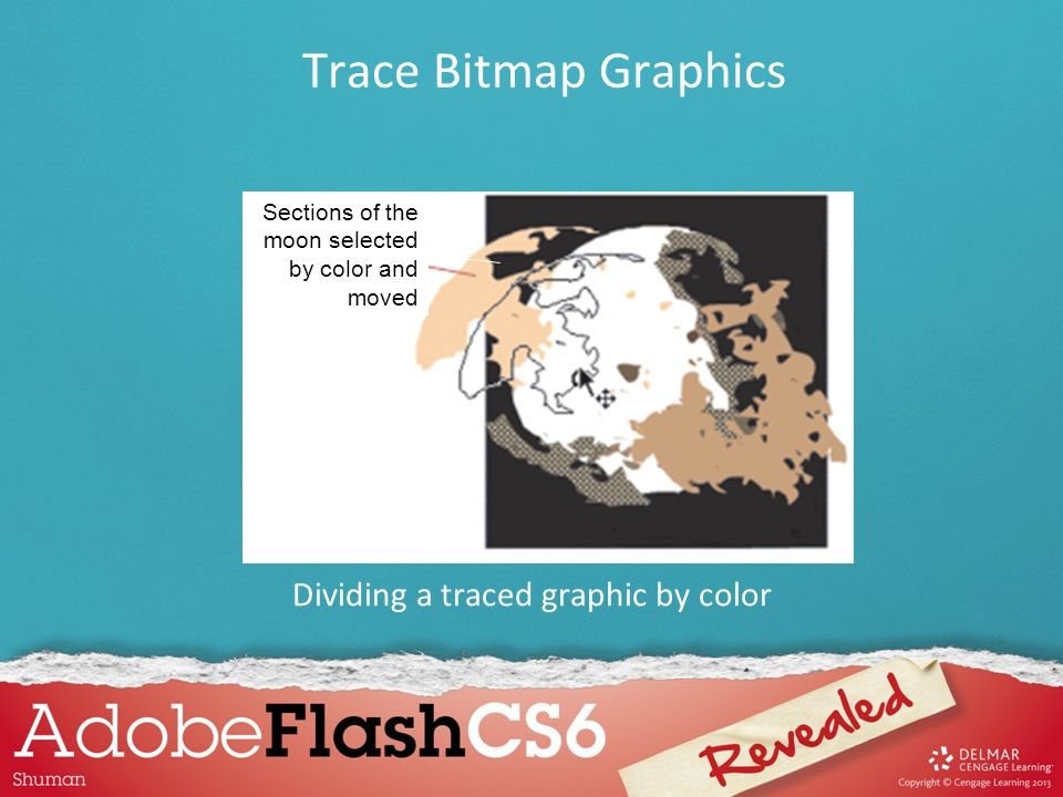 Dividing a traced graphic by color