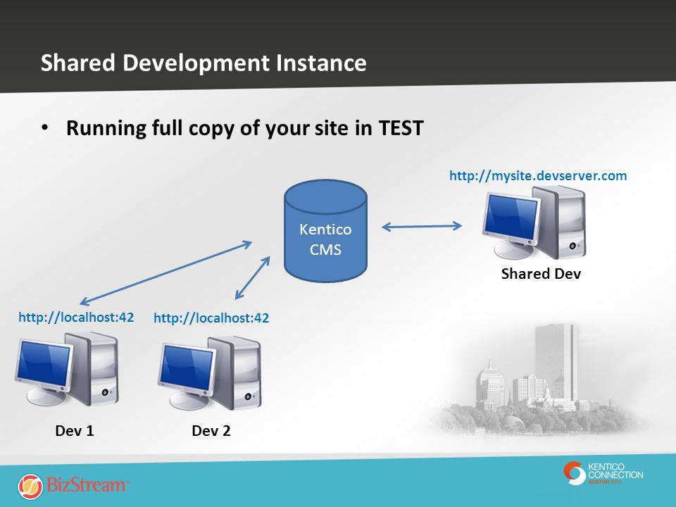 Shared Development Instance