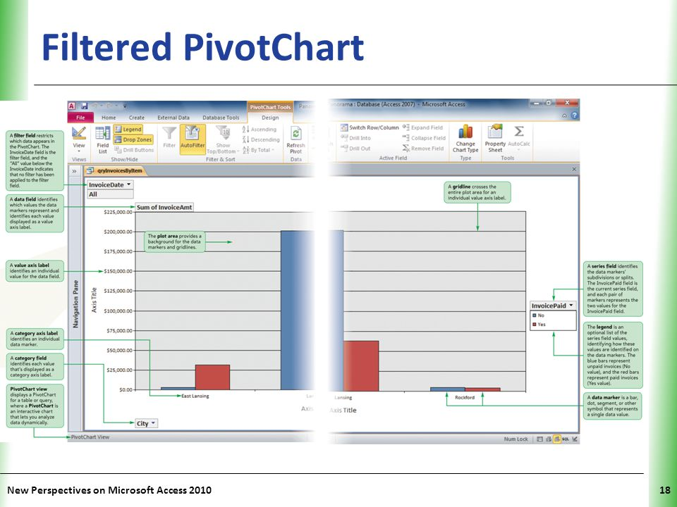 Filtered PivotChart New Perspectives on Microsoft Access 2010