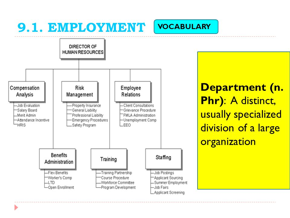 9.1. EMPLOYMENT VOCABULARY. Department (n. Phr): A distinct, usually specialized division of a large organization.