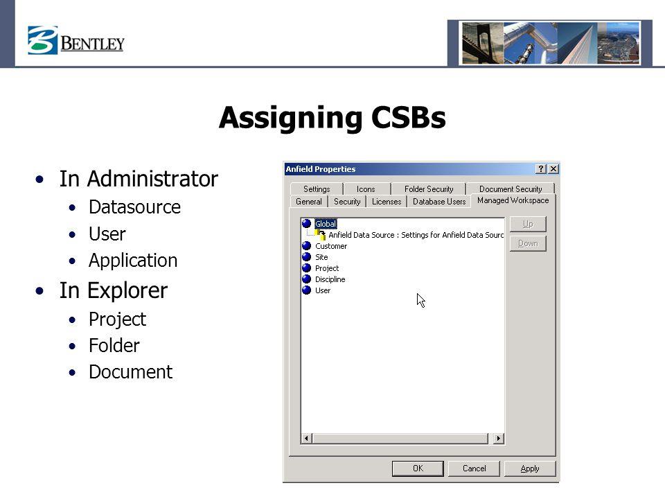 Assigning CSBs In Administrator In Explorer Datasource User
