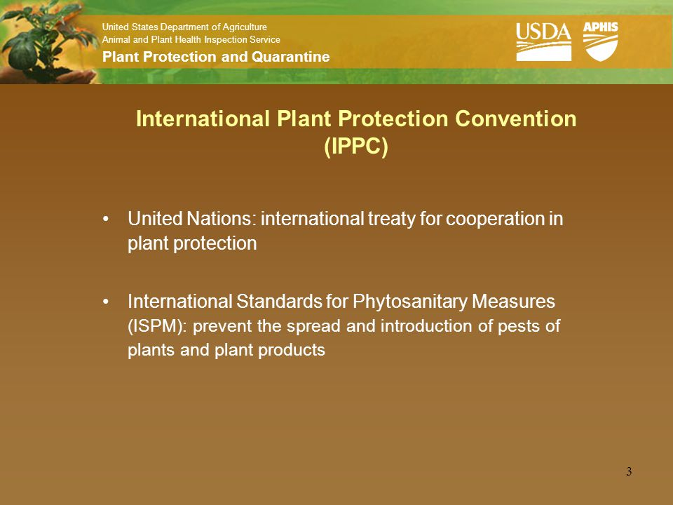 Phytosanitary Issues in the International Movement of Plant Products United States Department of Agriculture Animal and Plant Health Inspection Service Plant Protection and Quarantine Phytosanitary Issues Management Export Services April 18, 2007