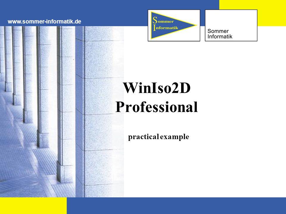 www.sommer-informatik.de WinIso2D Professional practical example