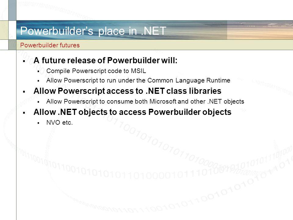 Powerbuilder's place in .NET
