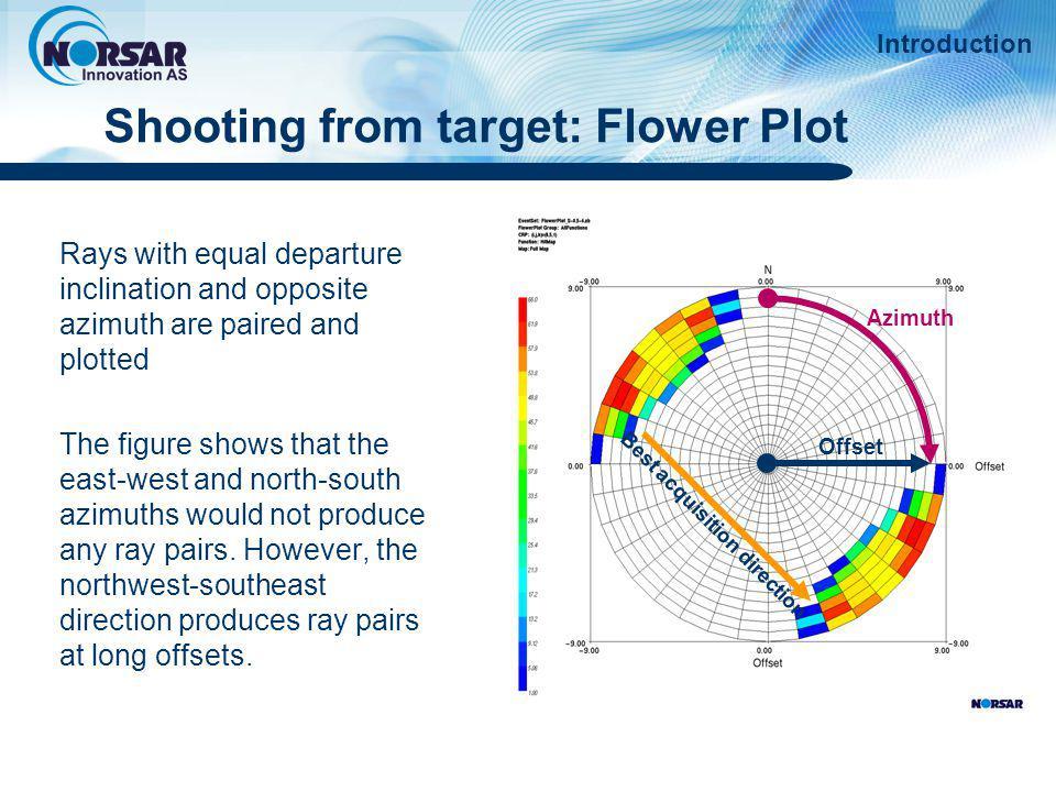 Shooting from target: Flower Plot