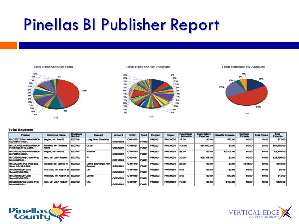 Pinellas BI Publisher Report