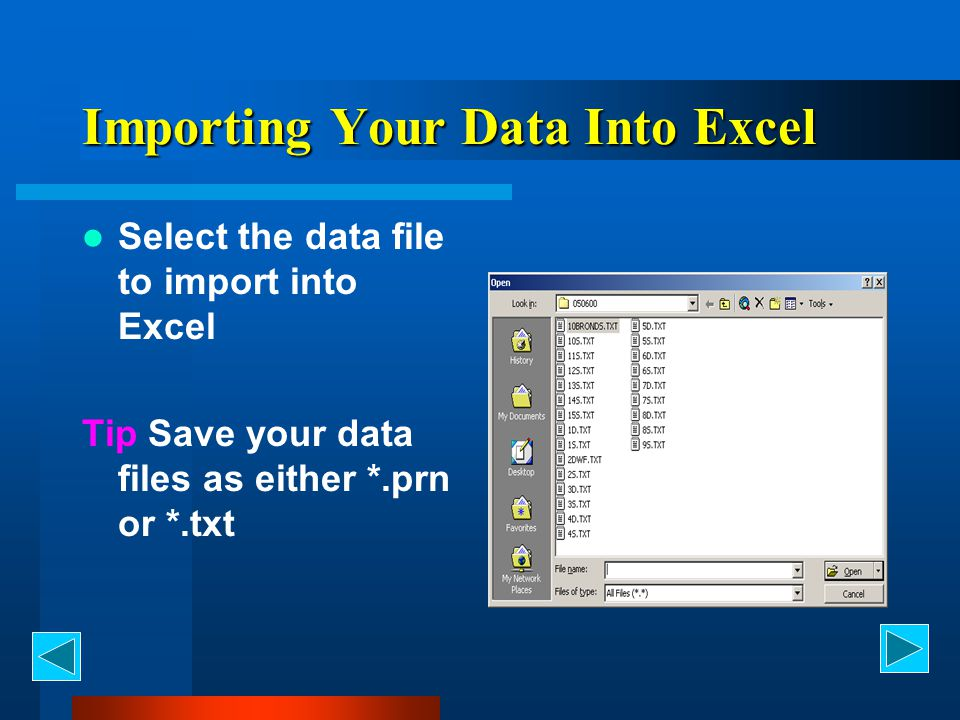 Importing Your Data Into Excel