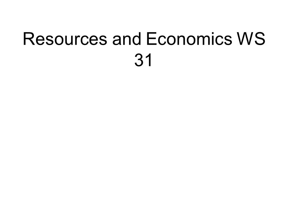 Resources and Economics WS 31