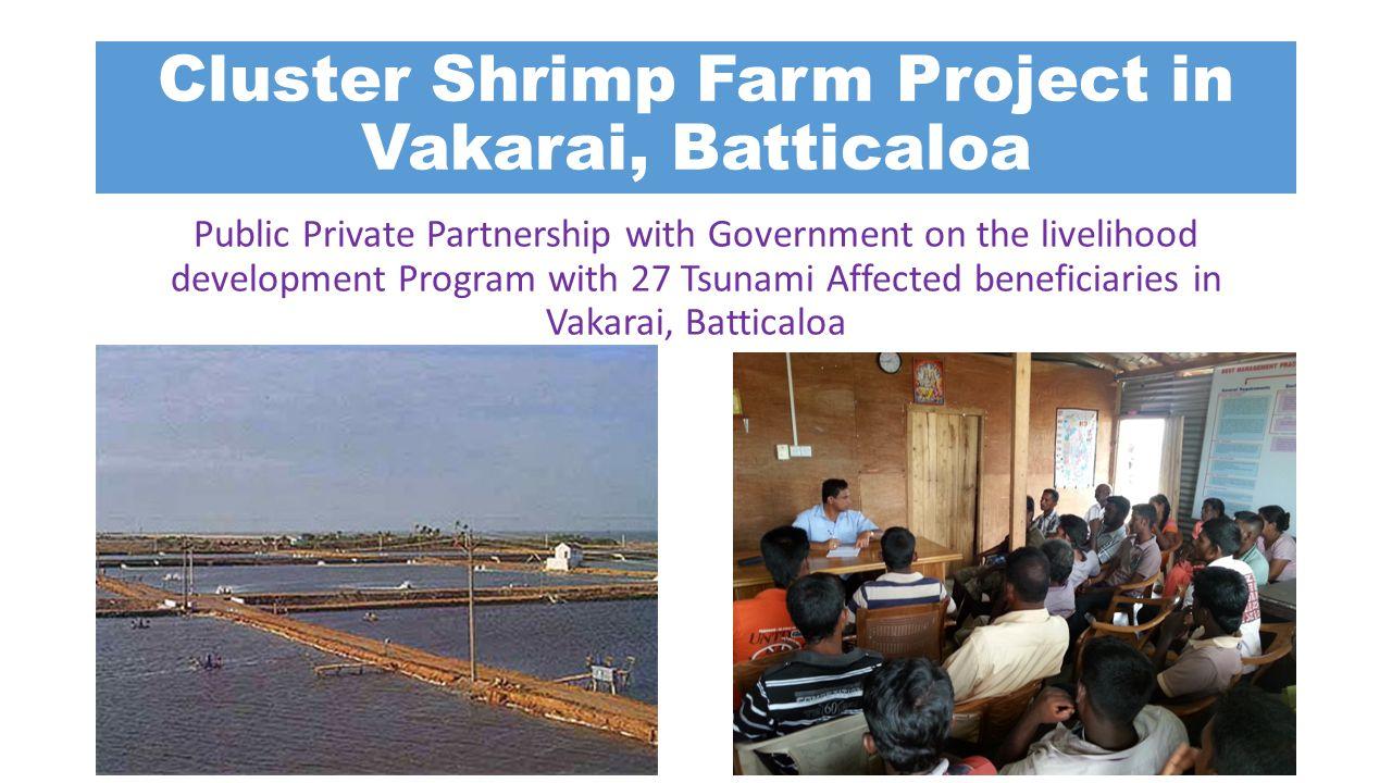 Cluster Shrimp Farm Project in Vakarai, Batticaloa