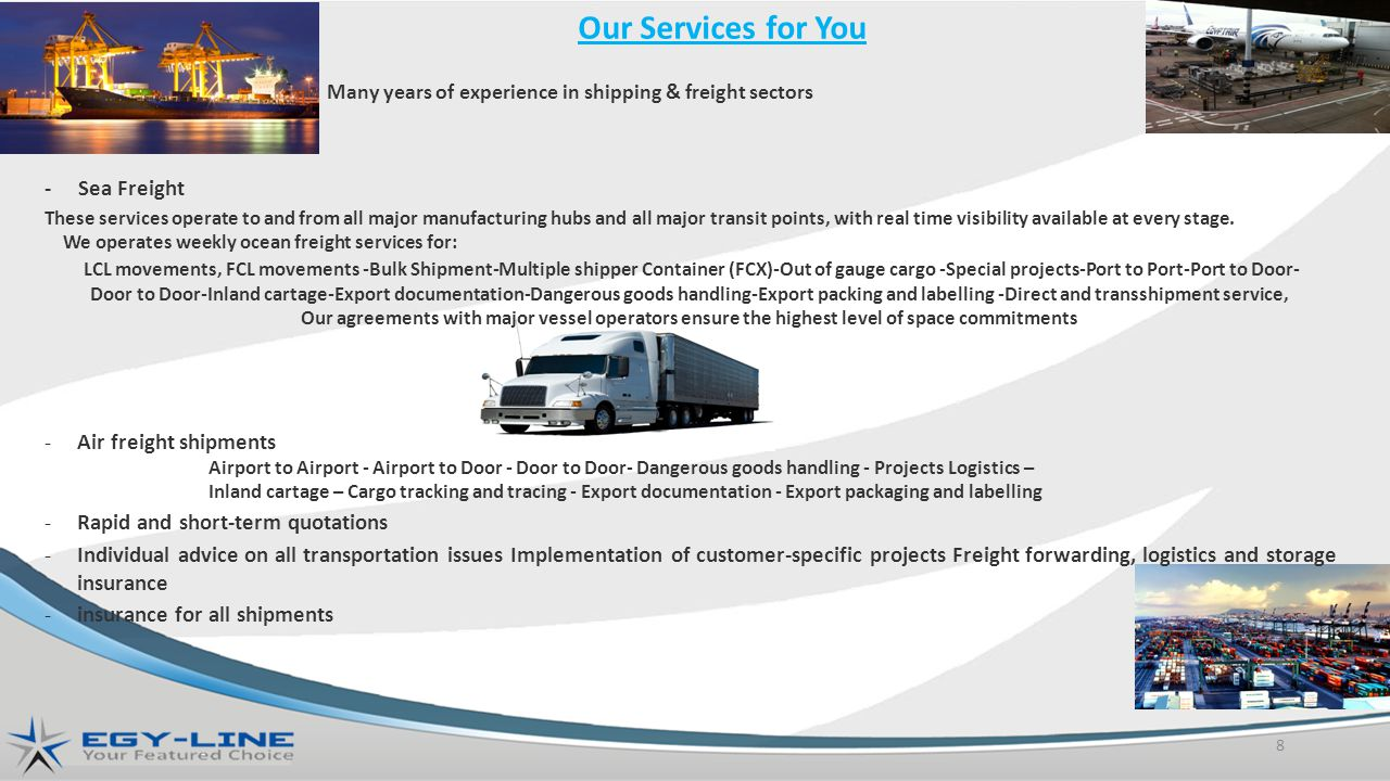 Many years of experience in shipping & freight sectors