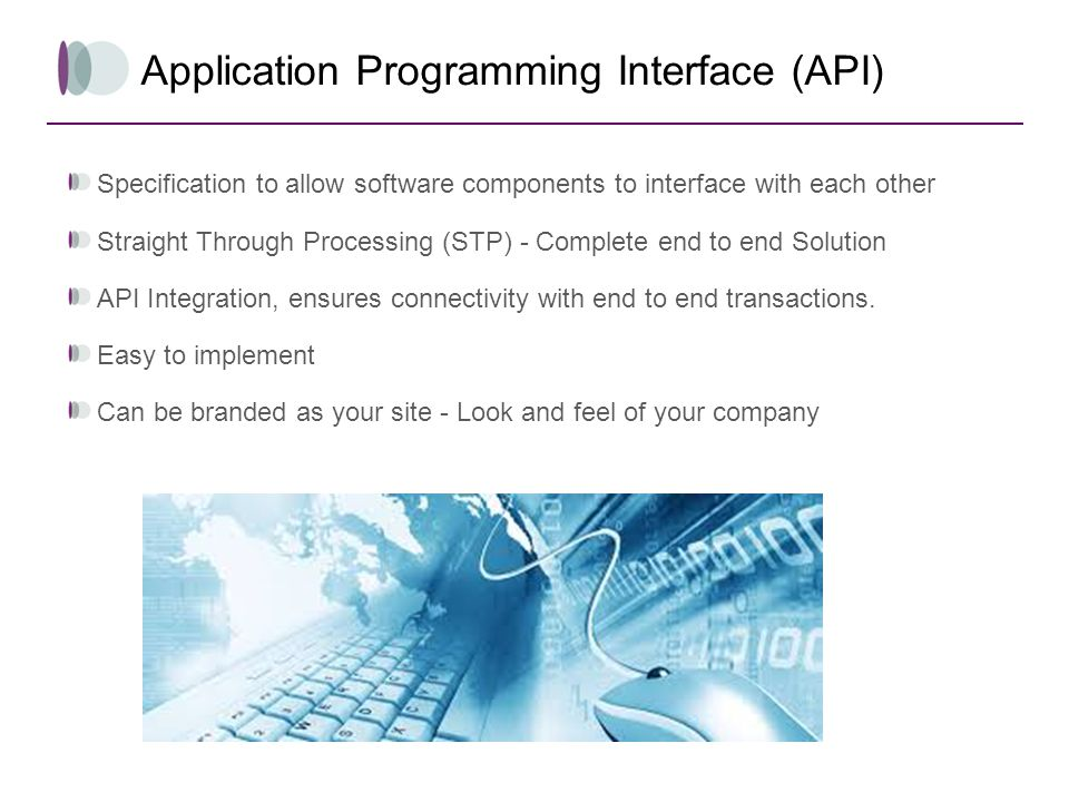Application Programming Interface (API)