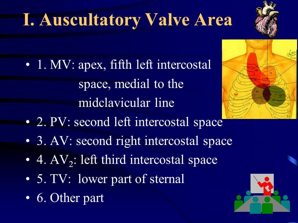 I. Auscultatory Valve Area