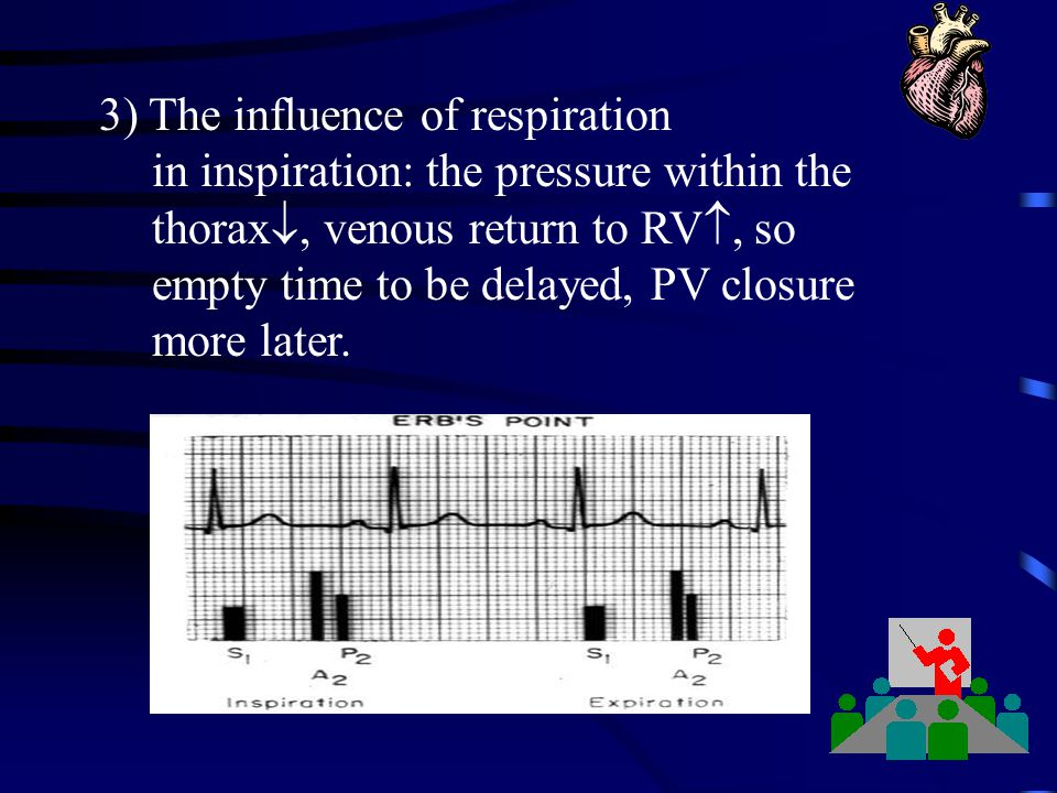 3) The influence of respiration