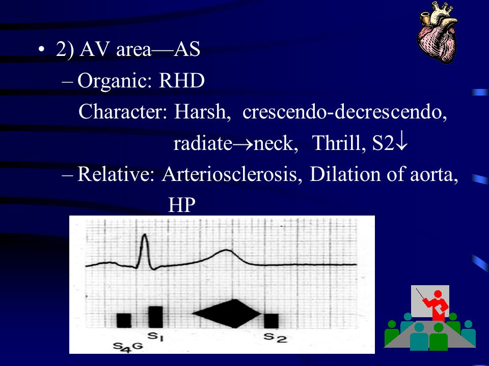2) AV area—AS Organic: RHD. Character: Harsh, crescendo-decrescendo, radiateneck, Thrill, S2 Relative: Arteriosclerosis, Dilation of aorta,