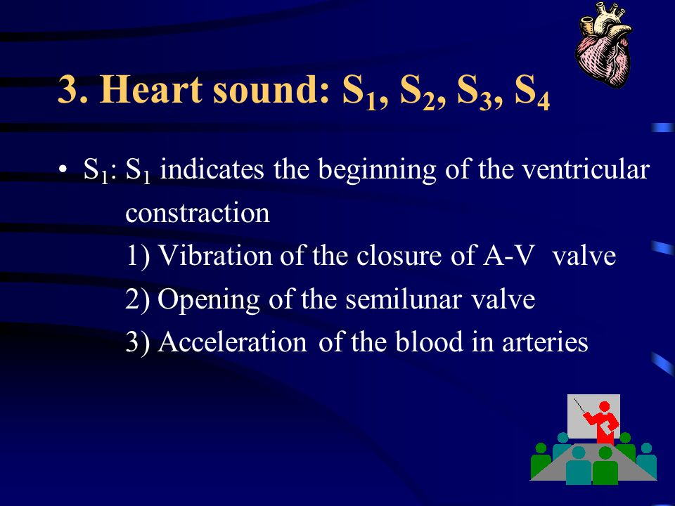 3. Heart sound: S1, S2, S3, S4 S1: S1 indicates the beginning of the ventricular. constraction. 1) Vibration of the closure of A-V valve.