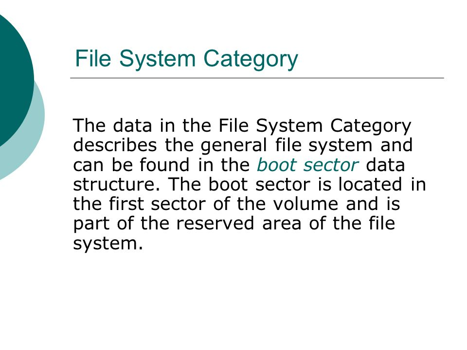 File System Category