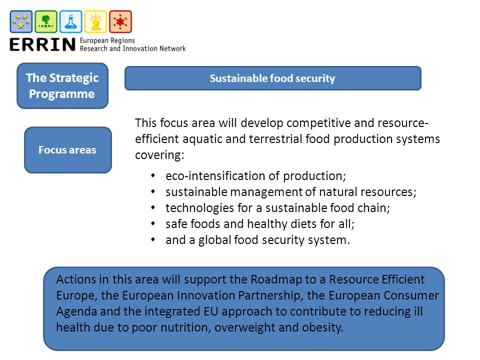 The Strategic Programme Sustainable food security