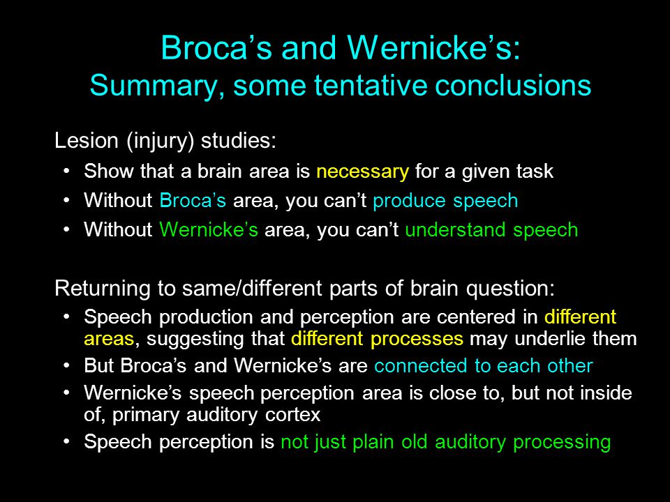 Broca's and Wernicke's: Summary, some tentative conclusions