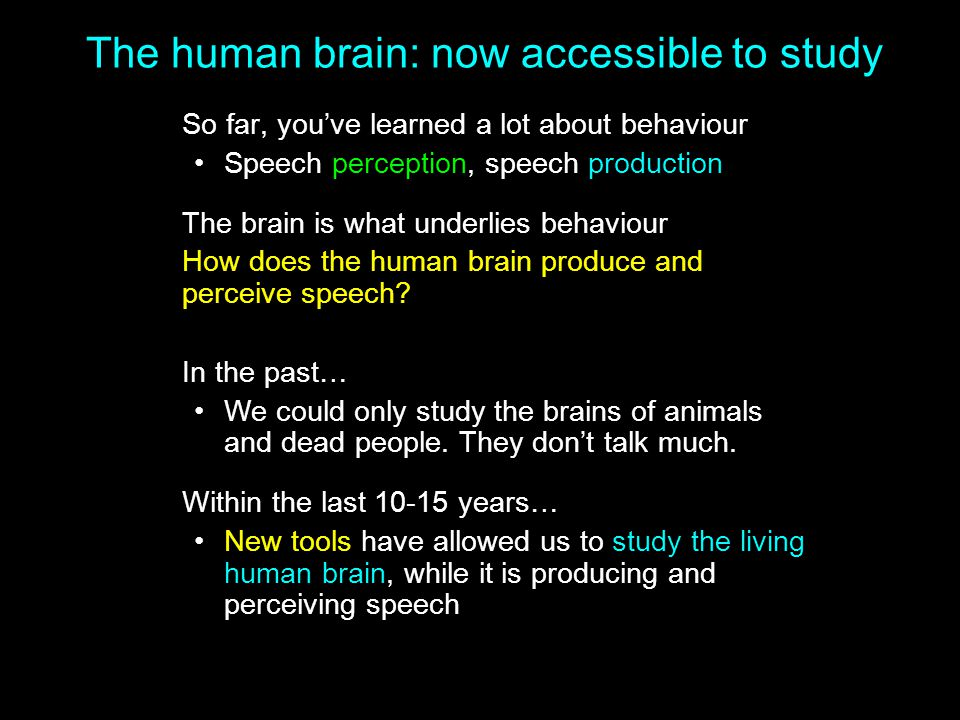 The human brain: now accessible to study