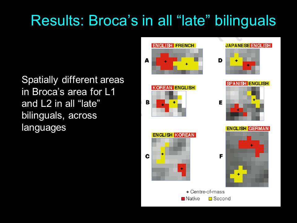 Results: Broca's in all late bilinguals
