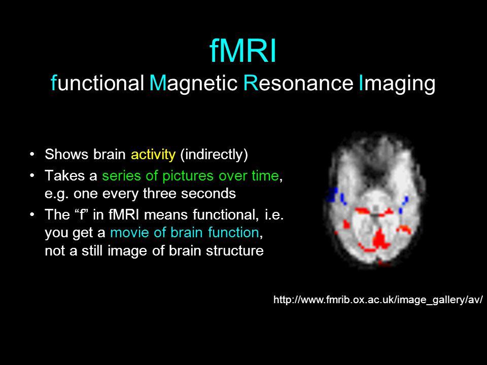 fMRI functional Magnetic Resonance Imaging