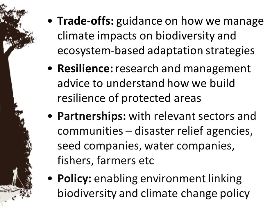 Trade-offs: guidance on how we manage climate impacts on biodiversity and ecosystem-based adaptation strategies