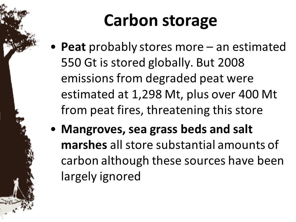 Carbon storage