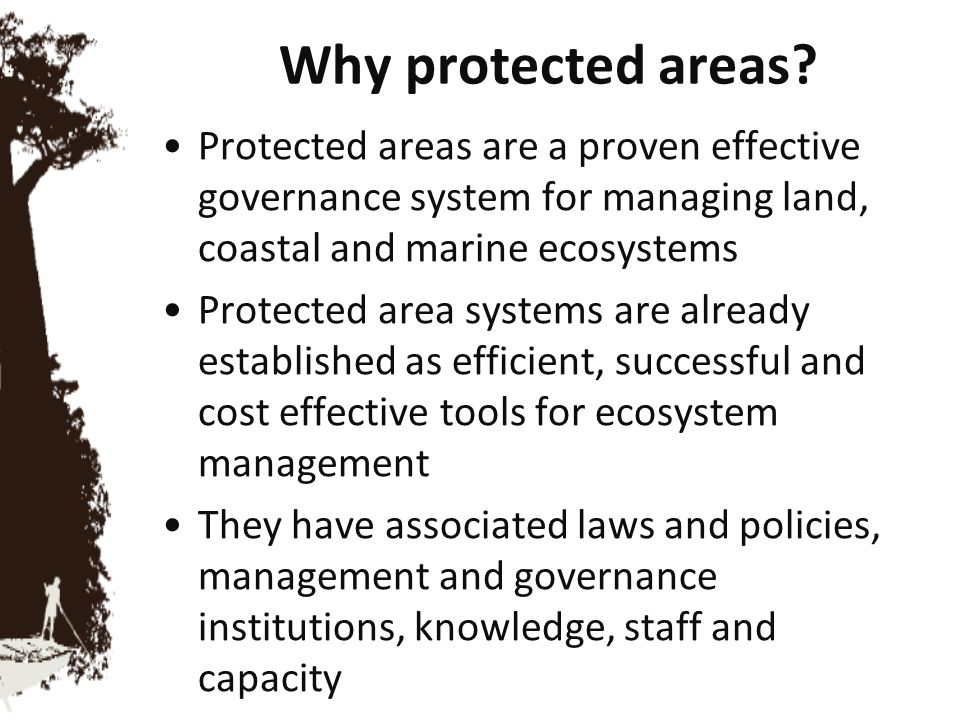 Why protected areas Protected areas are a proven effective governance system for managing land, coastal and marine ecosystems.