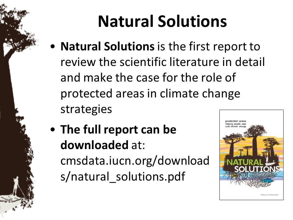 Natural Solutions