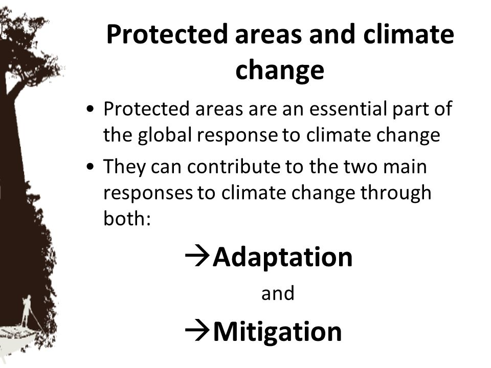 Protected areas and climate change