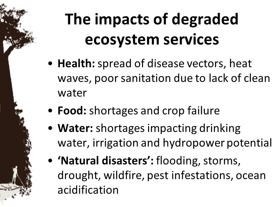 The impacts of degraded ecosystem services