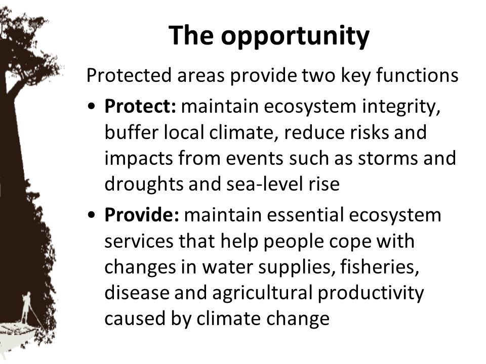 The opportunity Protected areas provide two key functions