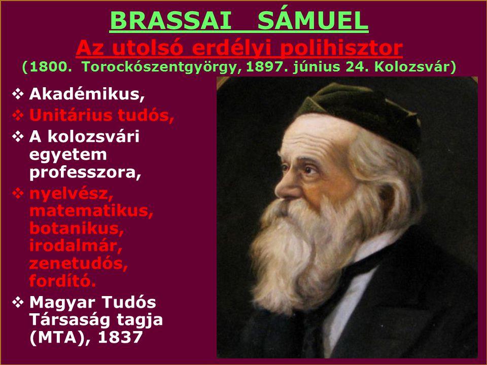 BRASSAI SÁMUEL Az utolsó erdélyi polihisztor (1800