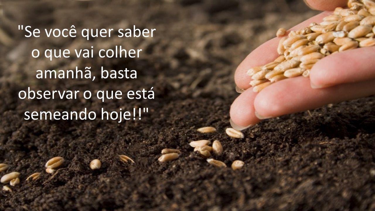 Se você quer saber o que vai colher amanhã, basta observar o que está semeando hoje!!