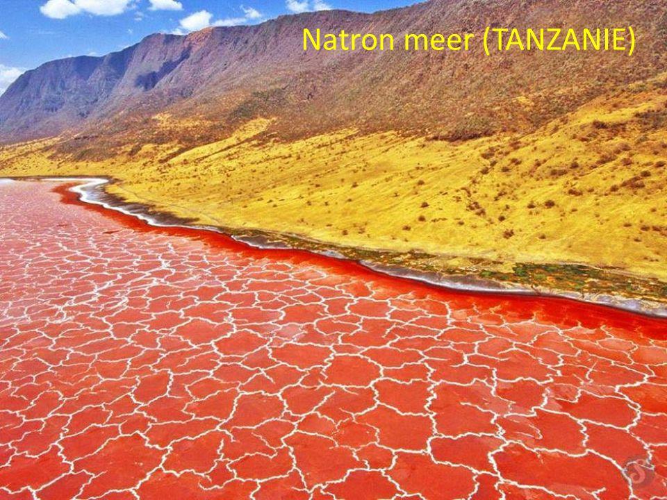 Natron meer (TANZANIE)